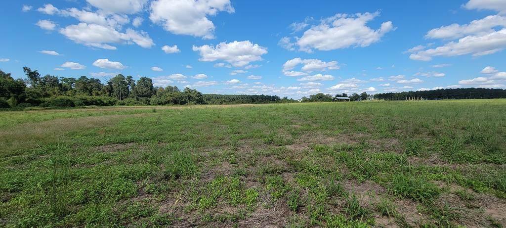 19 Acres County Rd 49  (19.235 Acres) - Photo 1