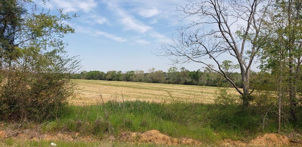 3 Acres Bill Yance Rd Lot 8 - Photo 1