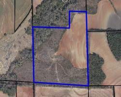 0 53, Henry County, AL 36345 (MLS #175719) :: Team Linda Simmons Real Estate