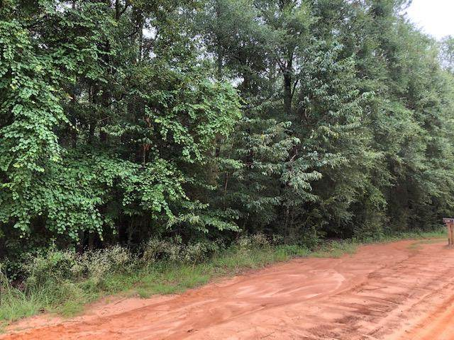 0 Pineview Lane, Samson, AL 36477 (MLS #175816) :: Team Linda Simmons Real Estate