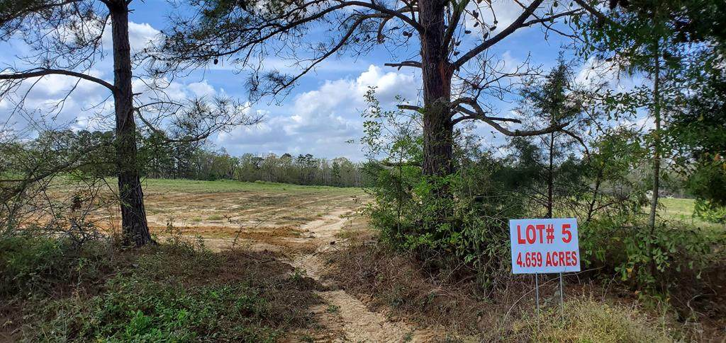 4.6 Acre North County Road 33    4.6 Acres Lot 5 - Photo 1