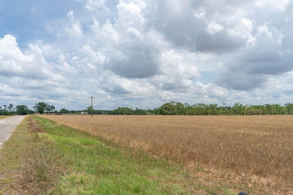0 County Road 14 - Photo 1