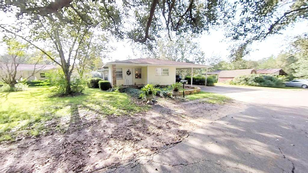 517 Bluff Springs Road - Photo 1