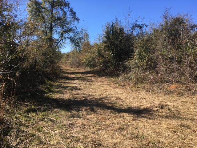00 NE Bill Yance Rd, Columbia, AL 36319 (MLS #181060) :: Team Linda Simmons Real Estate