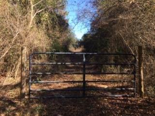 0 Neil Grantham, Elba, AL 36323 (MLS #181125) :: Team Linda Simmons Real Estate