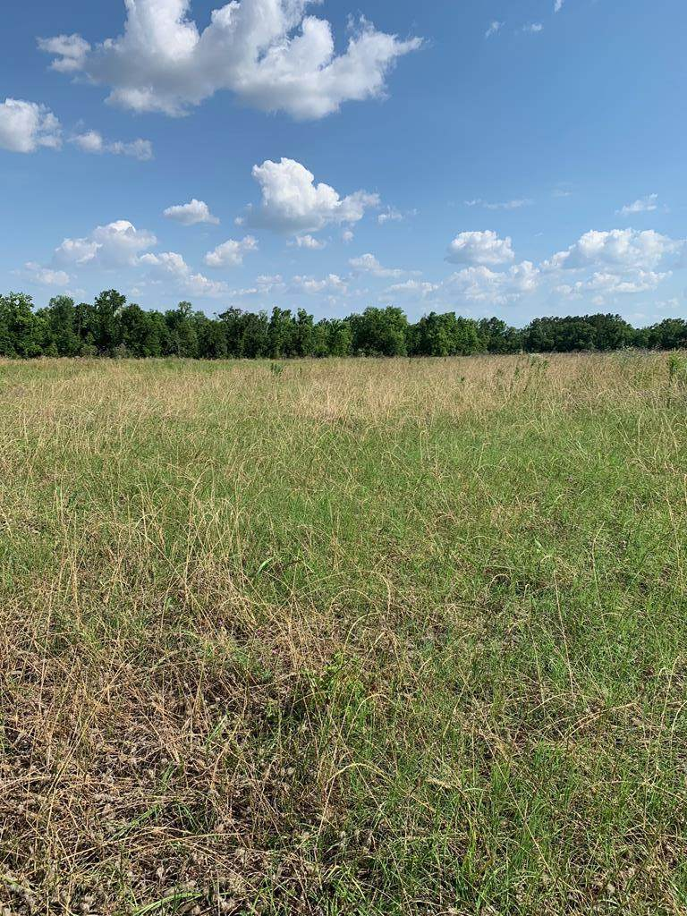 Lot 1 0 S Co. Rd. 33 - Photo 1