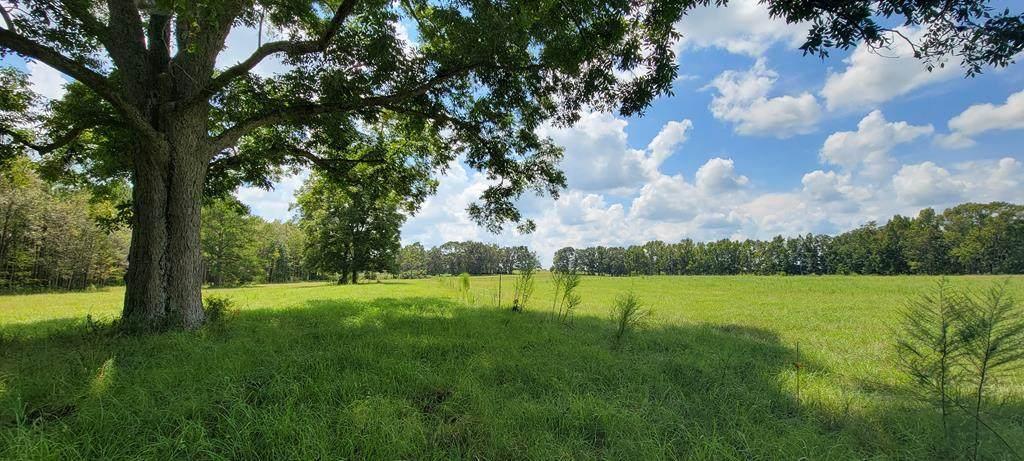 10.5 Acres County Rd 4   (10.5 Acres) - Photo 1