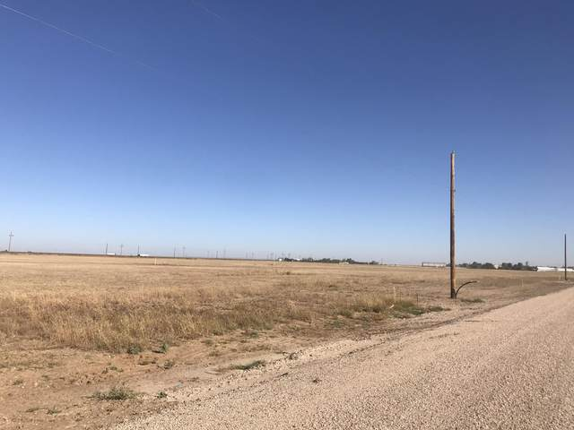 10841 Lena, Dumas, TX 79029 (#AR-2248) :: RE/MAX Town and Country