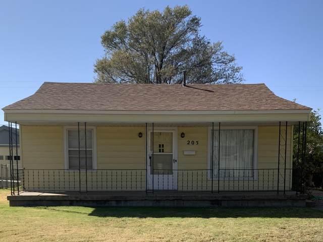 205 Cedar Ave, Dumas, TX 79029 (#AR-2252) :: RE/MAX Town and Country