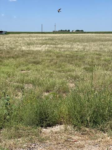 Address Not Published, Dumas, TX 79029 (#BH-2328) :: RE/MAX Town and Country