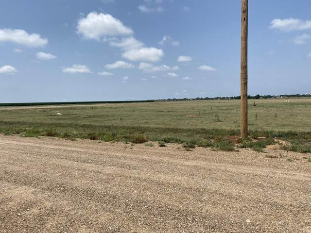 Address Not Published, Dumas, TX 79029 (#XR-313) :: RE/MAX Town and Country