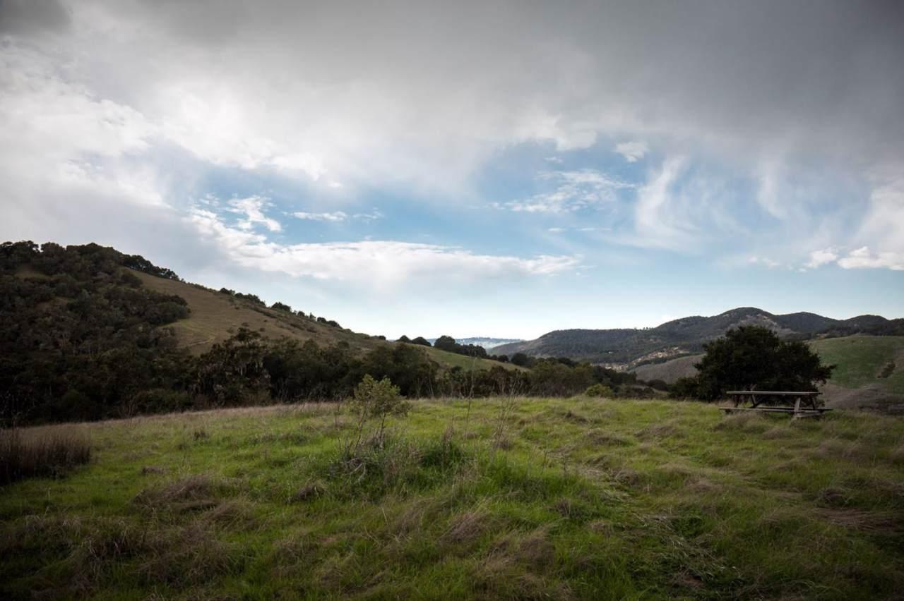 33 Potrero Trail - Photo 1