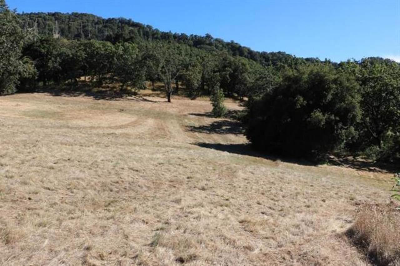 39 Arroyo Sequoia - Photo 1