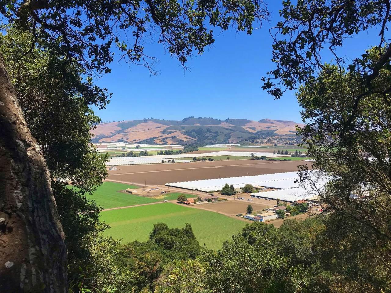1045 Pajaro Hills Ct - Photo 1