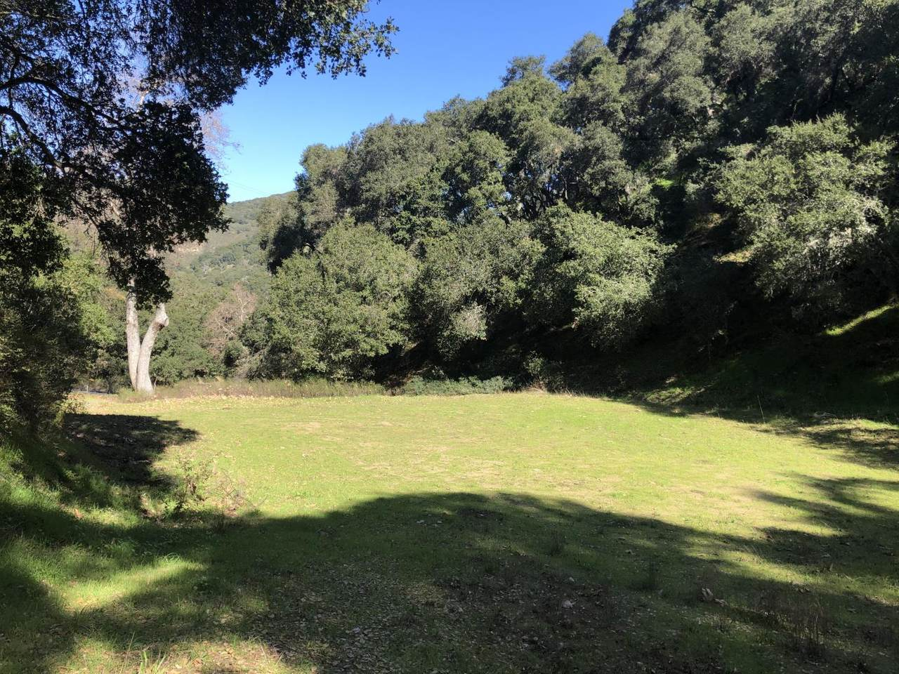 2925 Quinn Canyon Road - Photo 1