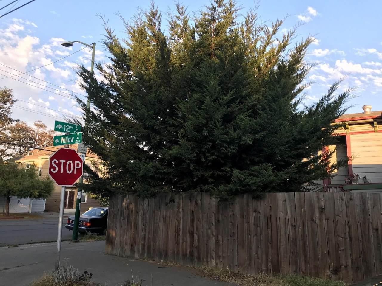 1699 12th Street - Photo 1