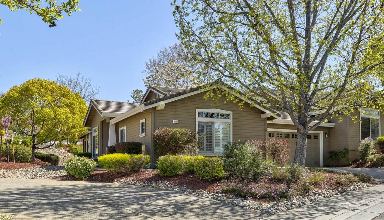 8631 American Oak Drive - Photo 1