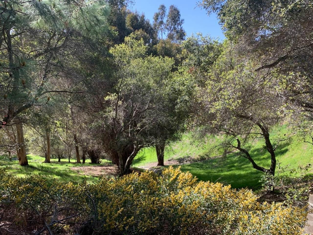 3350 La Mesa Drive - Photo 1