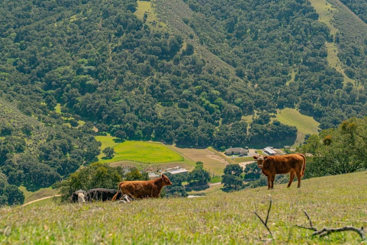 34021 Chualar Canyon Road - Photo 1