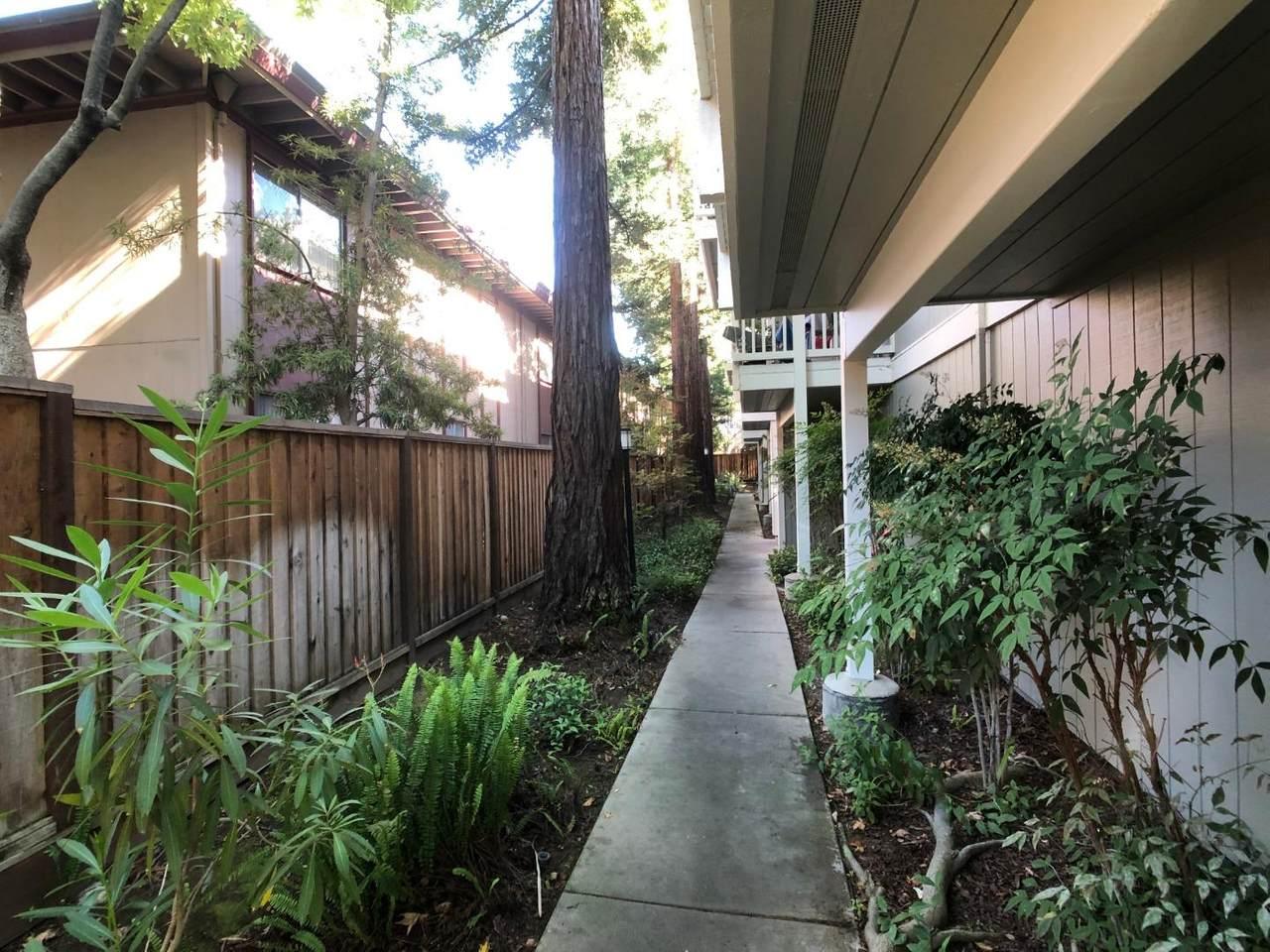 866 Apricot Avenue - Photo 1