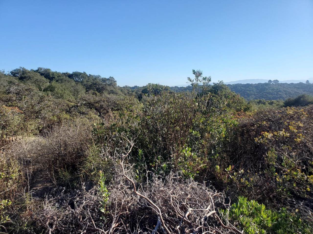 0 Mallory Canyon Road - Photo 1
