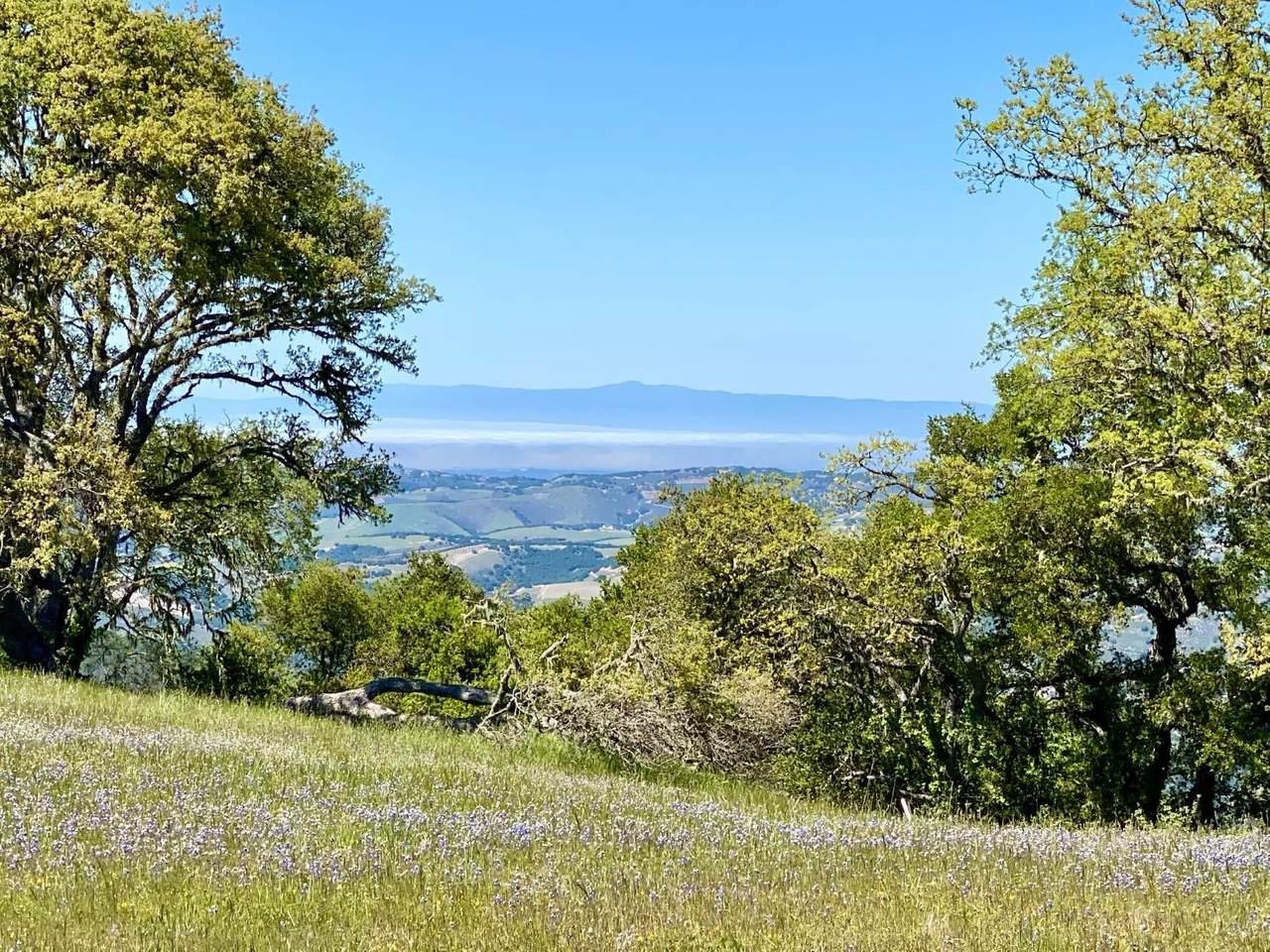 24 Vasquez Trail - Photo 1