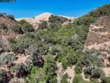 1233 Bollinger Canyon - Photo 13
