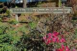 1463 Marchbanks Drive - Photo 2