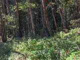 0 Garrapatos Road - Photo 1