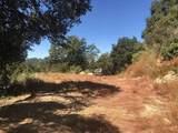 0 Conley Creek - Photo 6