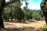 7 Long Ridge Trail - Photo 13