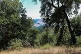 7 Long Ridge Trail - Photo 17