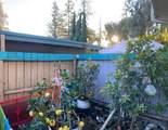235 El Rancho Verde Drive - Photo 15