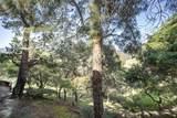 3350 La Mesa Drive - Photo 16