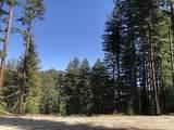 0 Little Buck Road - Photo 1