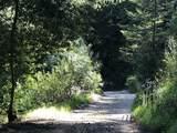 0 Little Buck Road - Photo 6