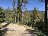 0 Little Buck Road - Photo 8
