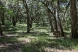 9 Garzas Trail - Photo 1