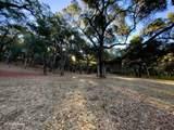 10 Garzas Trail - Photo 7
