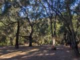 10 Garzas Trail - Photo 8