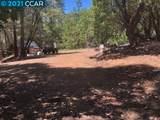 23240 Van De Hei Ranch Rd - Photo 5