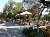123 Hacienda Carmel - Photo 12