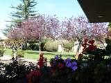 123 Hacienda Carmel - Photo 14