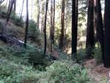 37767 Palo Colorado Road - Photo 7