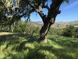 33734 Old Country Road - Photo 10