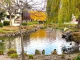 107 Shorebird Circle - Photo 2