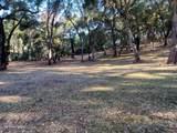 10 Garzas Trail - Photo 2