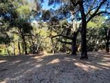 10 Garzas Trail - Photo 3