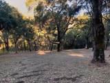 10 Garzas Trail - Photo 4