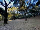 10 Garzas Trail - Photo 6